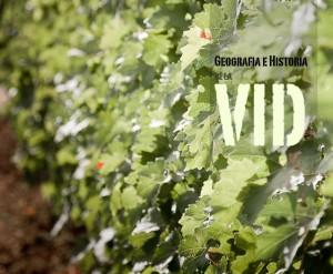 vid, vinos, historia